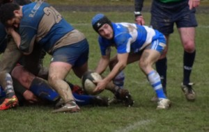 ARTICLE RUGBY Amateur limousin
